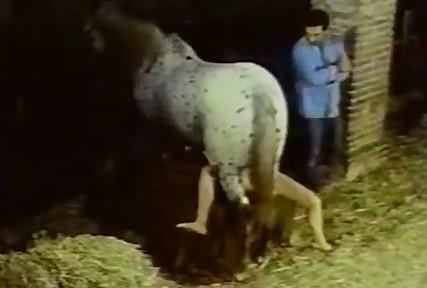 Эротичная русоволосая зоофилка размяла жеребцу ялдак дала ебать в шмоньку ретро зоо