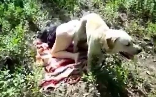 Dog sex извращенка с поражающей задницей подъебнулась с четвероногим другом в лесочку порнозоо фильм