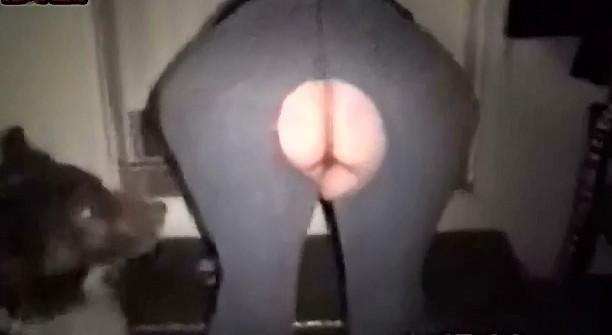 Porn zoo video толстая блядюга увлекается потрахушками с кобелем