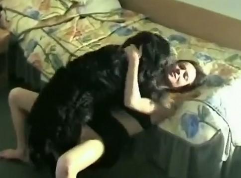 Dog porn черный кабысдох трахает дамочку в спальне порно зоо домашнее
